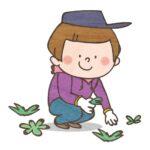 草むしりをするときの服装と注意点