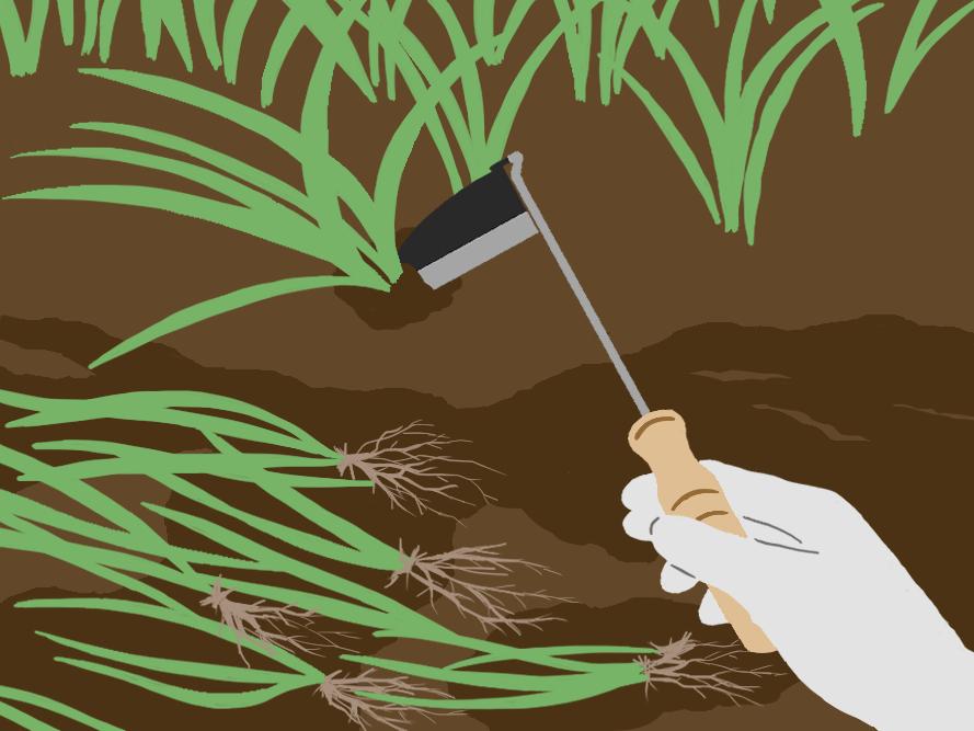 「3」ねじり鎌で土を掘り起こす