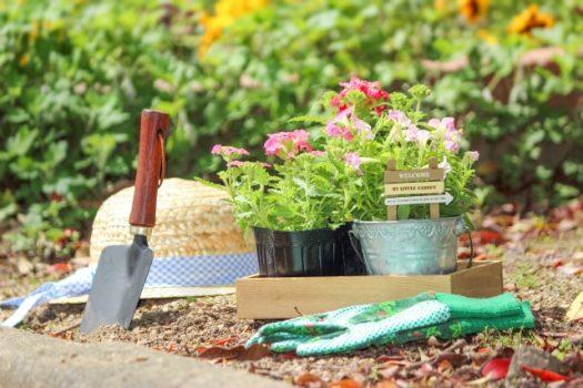 お庭のデザインのポイントとは?注意点を知って素敵なリフォームを