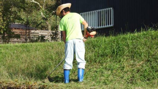 草刈りと芝刈り