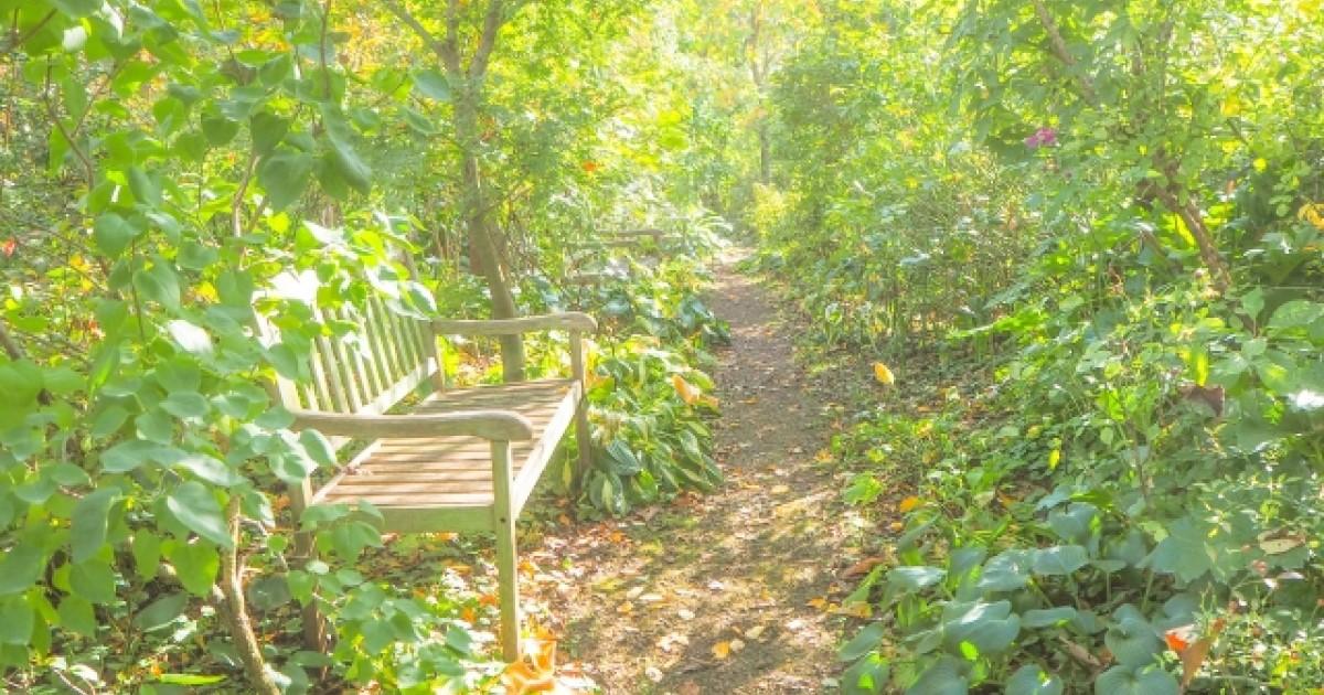 庭の整地費用はいくら?自分でやる方法や安く抑える方法などもご提案
