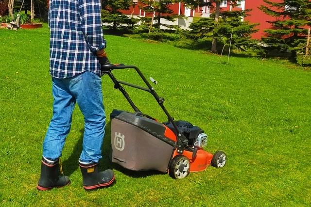 芝刈りの時期と作業のポイント