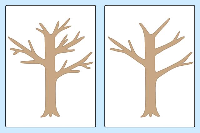 モッコクの剪定の仕方|透かし剪定のコツ