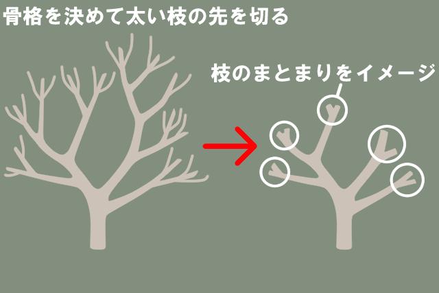 剪定方法1