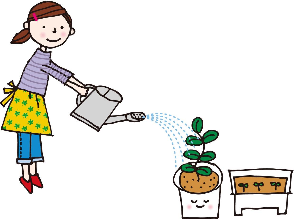 地植えで育てている場合は、降雨だけで十分です。