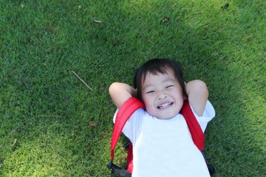 芝生の除草剤の選び方|芝が枯れない、子供もペットも安全な除草剤は?