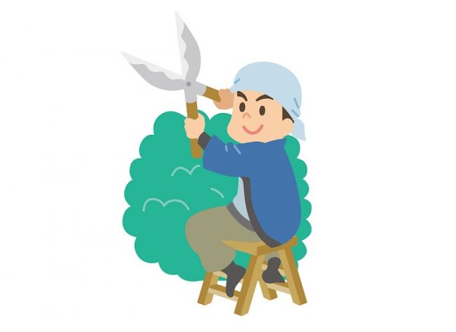 剪定業者の選び方7つのチェックポイント|庭木の単価・費用について