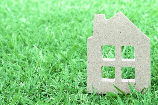 「芝生が除草剤で枯れた!」を防ぐ注意点