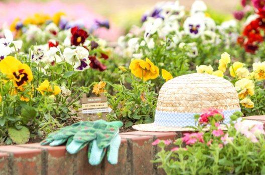 庭の花壇をオシャレにレイアウトしよう!花壇にオススメな植物も公開