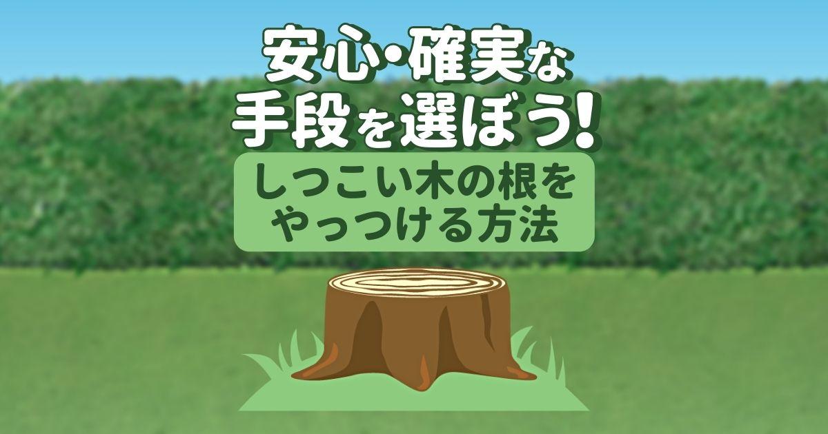安心・確実な手段を選ぼう!しつこい木の根をやっつける方法
