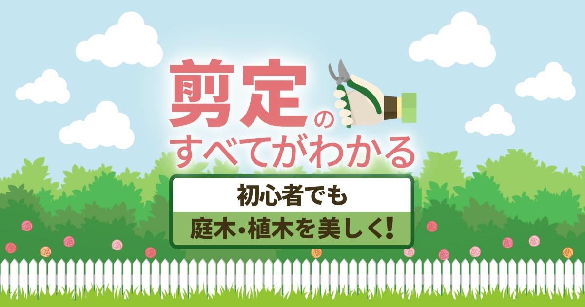 【図解】剪定の基本を学ぶ!9種類の剪定方法と庭木別の剪定時期