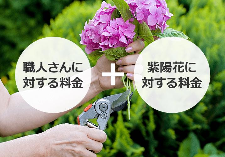 紫陽花の剪定でかかる費用はどのように決まる?