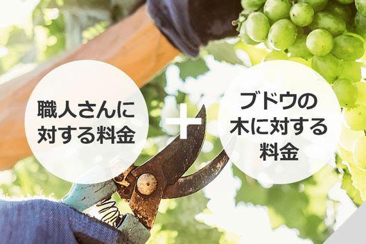 ブドウの剪定でかかる費用ってどれくらい?
