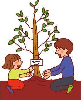 記念樹として植える