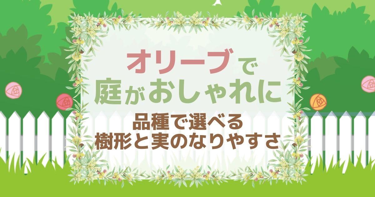 シンボルツリーにオリーブの木がおすすめ!庭木に人気の8品種を紹介