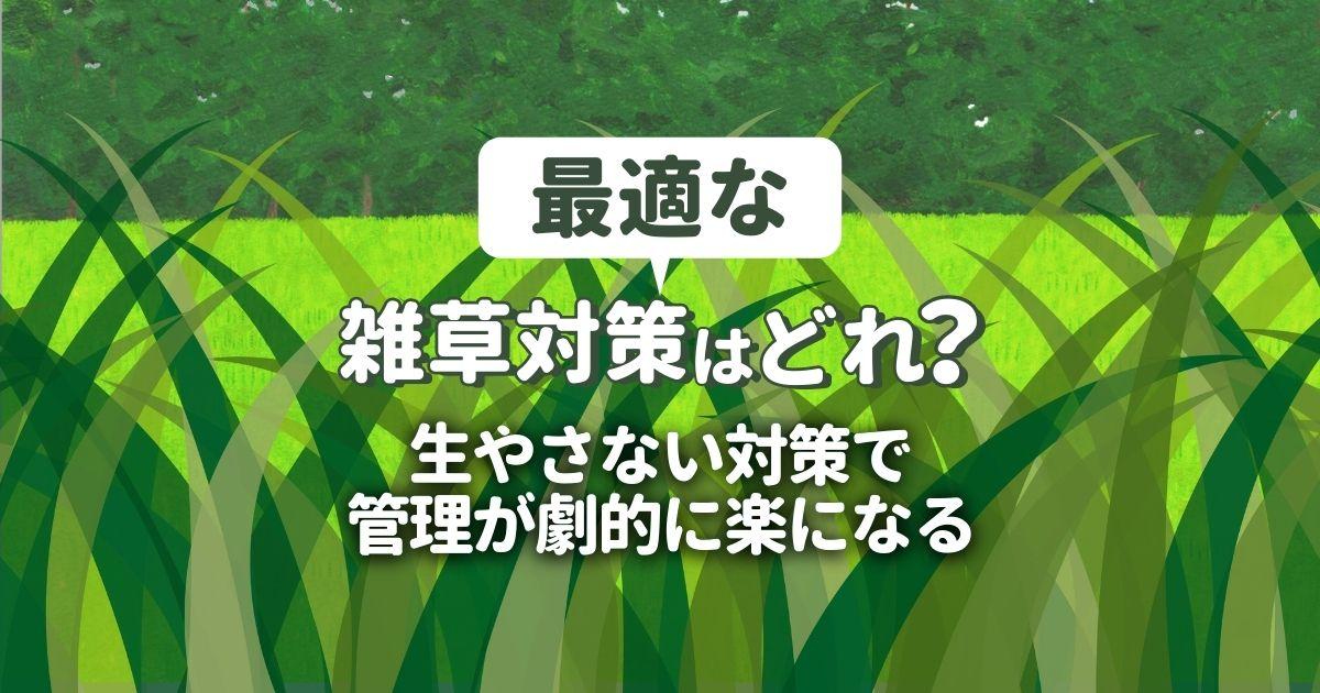 雑草対策の方法を選ぶポイント|プロの施工で草が生えない庭づくり